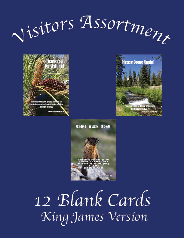 """Featured image for """"Visitors Assortment (Pack 1) – 12 Cards"""""""