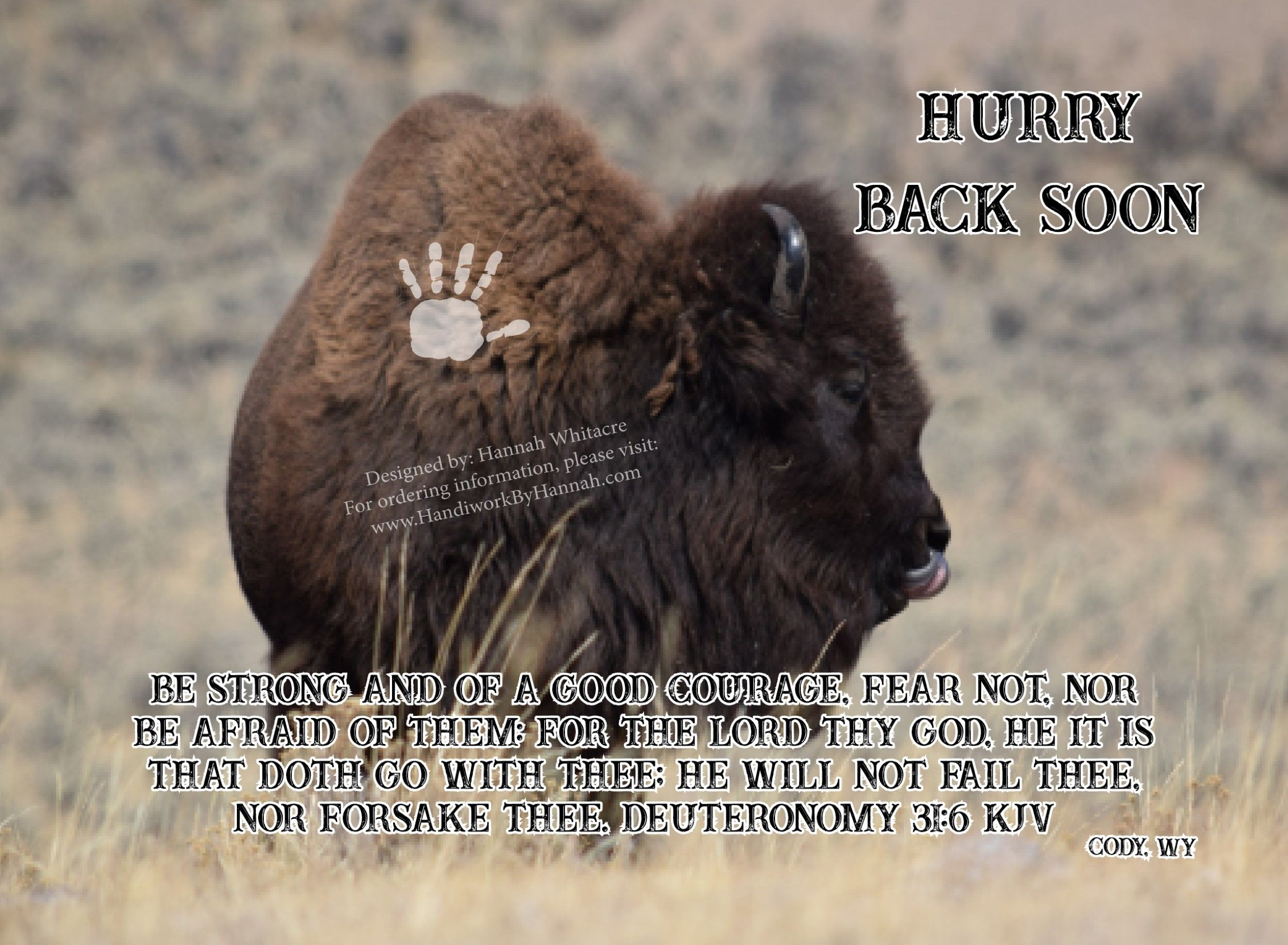 """Featured image for """"Buffalo (CARD-0043) – 10 Cards"""""""